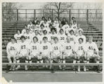 Men's lacrosse team (1975)