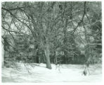 Massasoit Hall Snow Scene