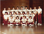 1990 Springfield College Softball Team