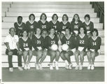 SC Women's Volleyball Team (1978)