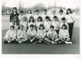 Springfield College Women's Lacrosse Team (1989)