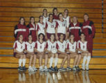 Springfield College Women's Volleyball Team (1999)
