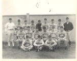 1946 Springfield College Baseball Team