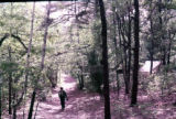Student walking on path in woods at East Campus