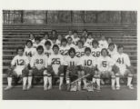 1981 Springfield College Men's Lacrosse Team