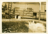 Student's splash after jumping into McCurdy Natatorium